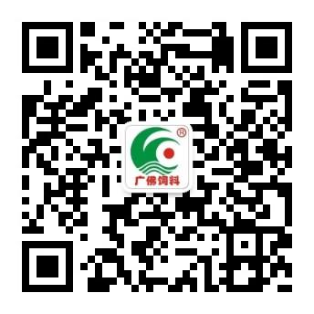 广东广佛bet9九州手机版二维码